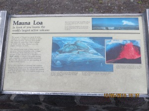 Mauna Loa, the largest volcano on earth.