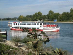 On the banks of the Rhine River